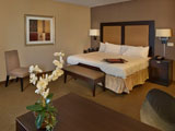 Single King Accessible Room at Hampton Inn and Suites Decatur