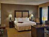 Single King Room at Hampton Inn and Suites Decatur